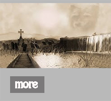 Shadow-VIDEO.jpg